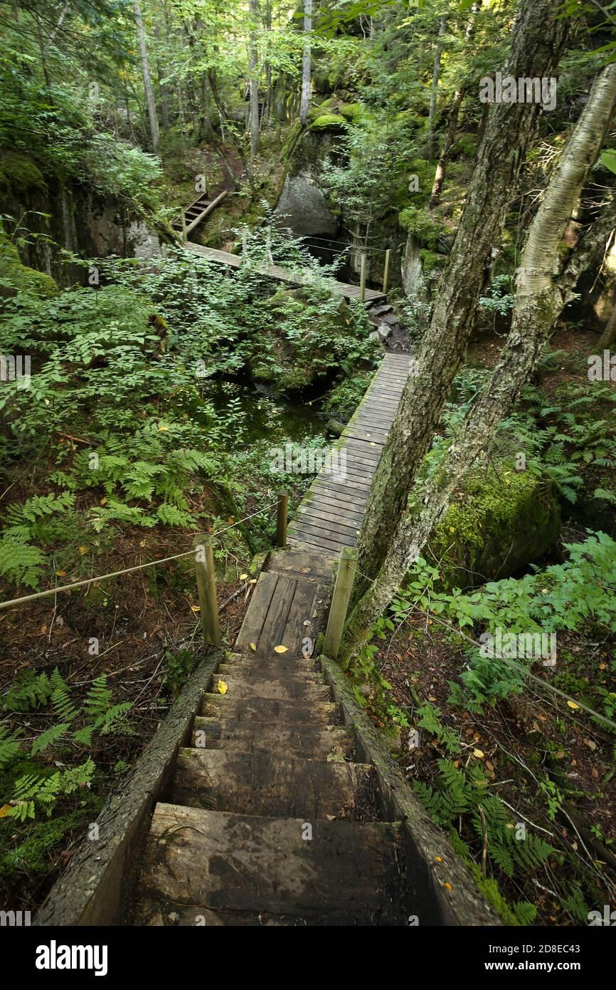 Rutas de senderismo en madera canadiense. Sentiers de randonnée la Marmitte dans les bois du Parc naturel régional de Portneuf. Foto de stock