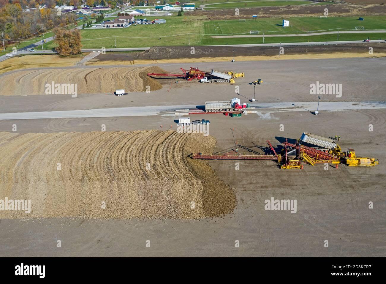 Croswell, Michigan - las remolachas azucareras se amontonan después de la cosecha en otoño, esperando su procesamiento en la Michigan Sugar Company. La empresa es una granja Foto de stock