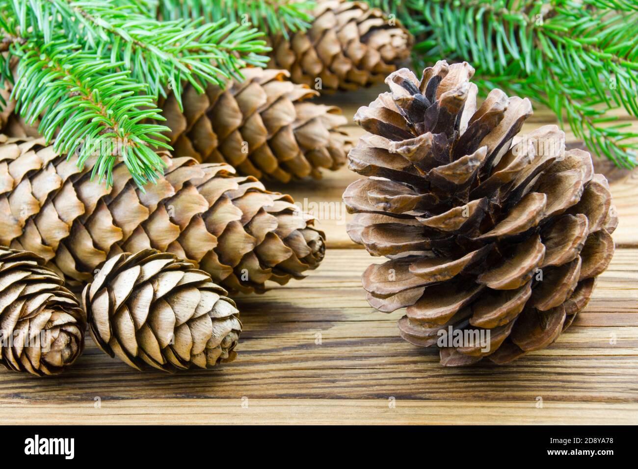 Varios conos sobre fondo de madera Foto de stock