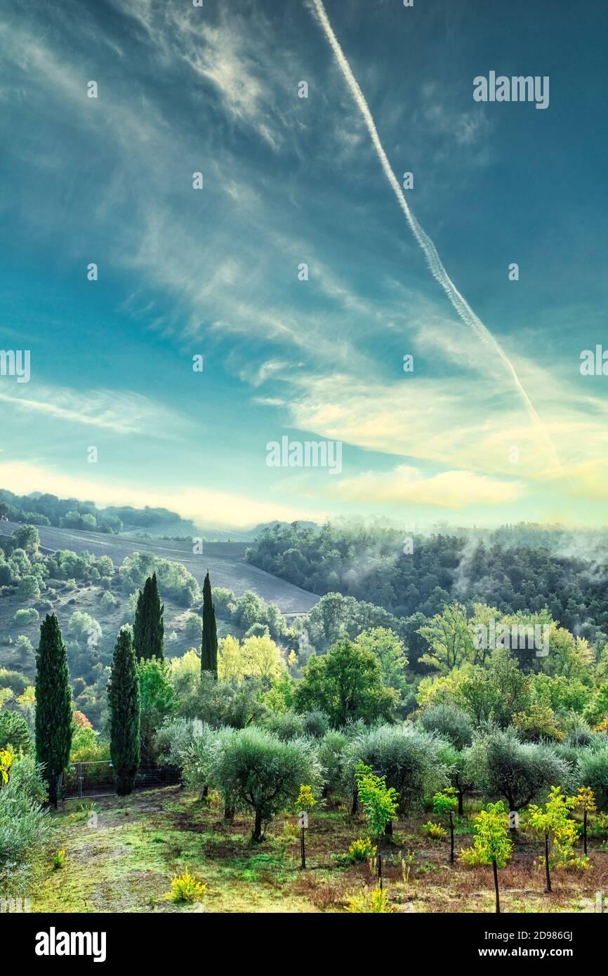 Idílico paisaje veraniego en Toscana Italia. Árboles verdes y cielo azul. Vertical. Foto de stock