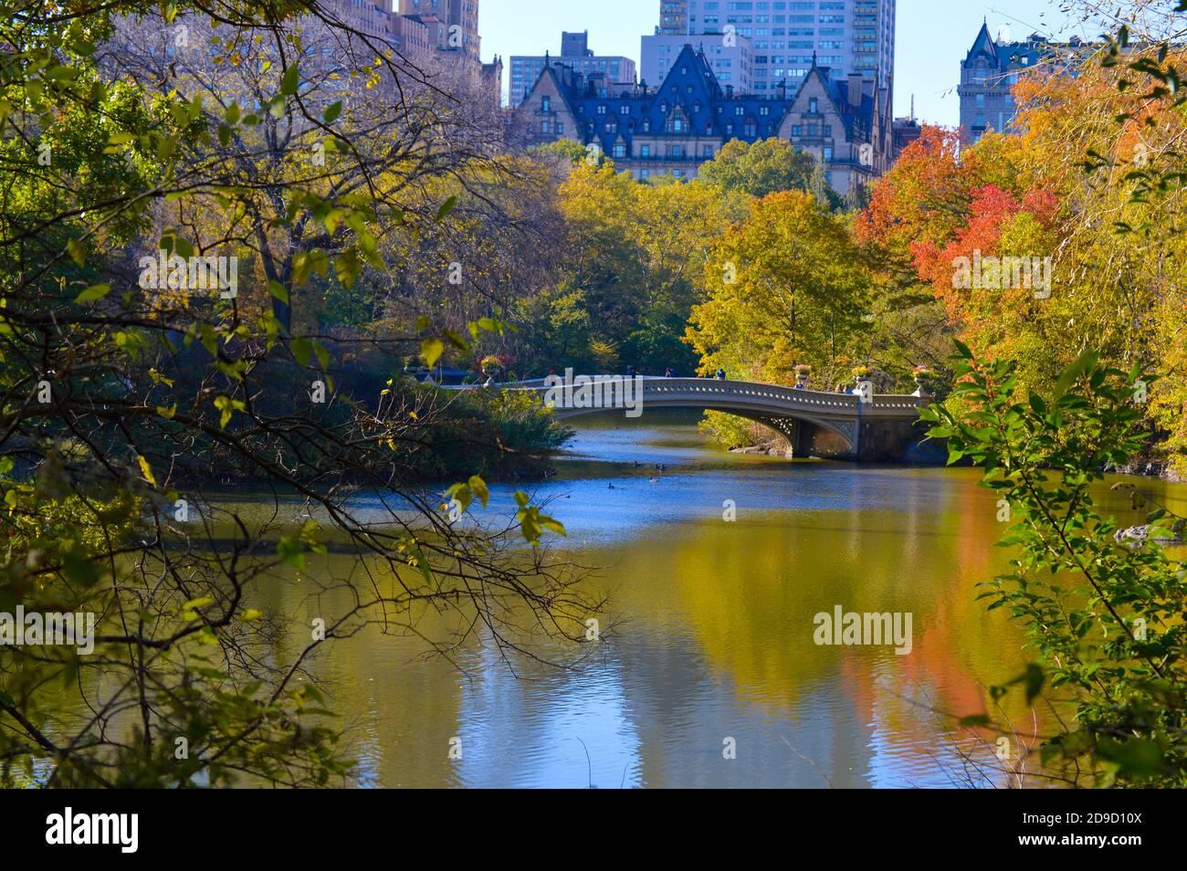 Caída del follaje en Central Park en la ciudad de Nueva York el 4 de noviembre de 2020. Foto de stock