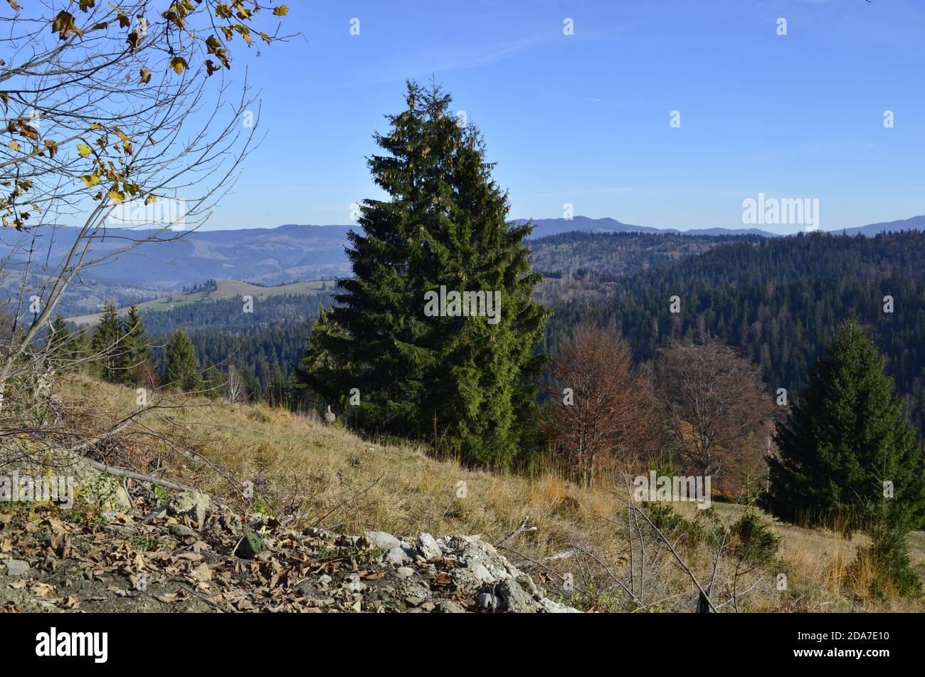 Montaña paisaje Foto de stock