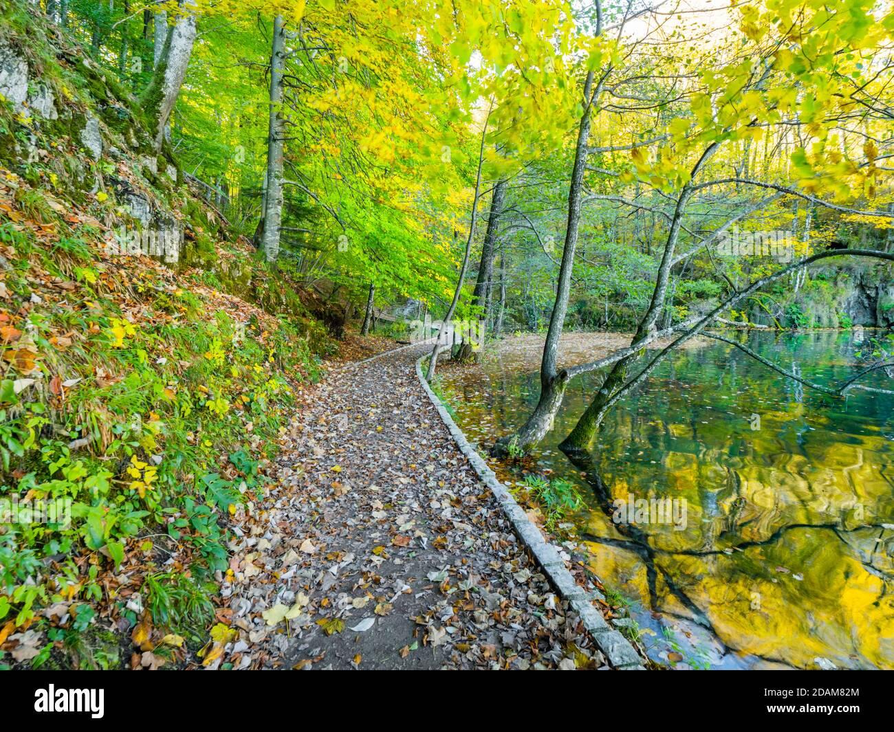 Impresionantes lagos de Plitvice parque nacional en Croacia Europa tranquilidad tranquilo, suave, zen, espléndido, precioso, idílicos colores vibrantes Foto de stock