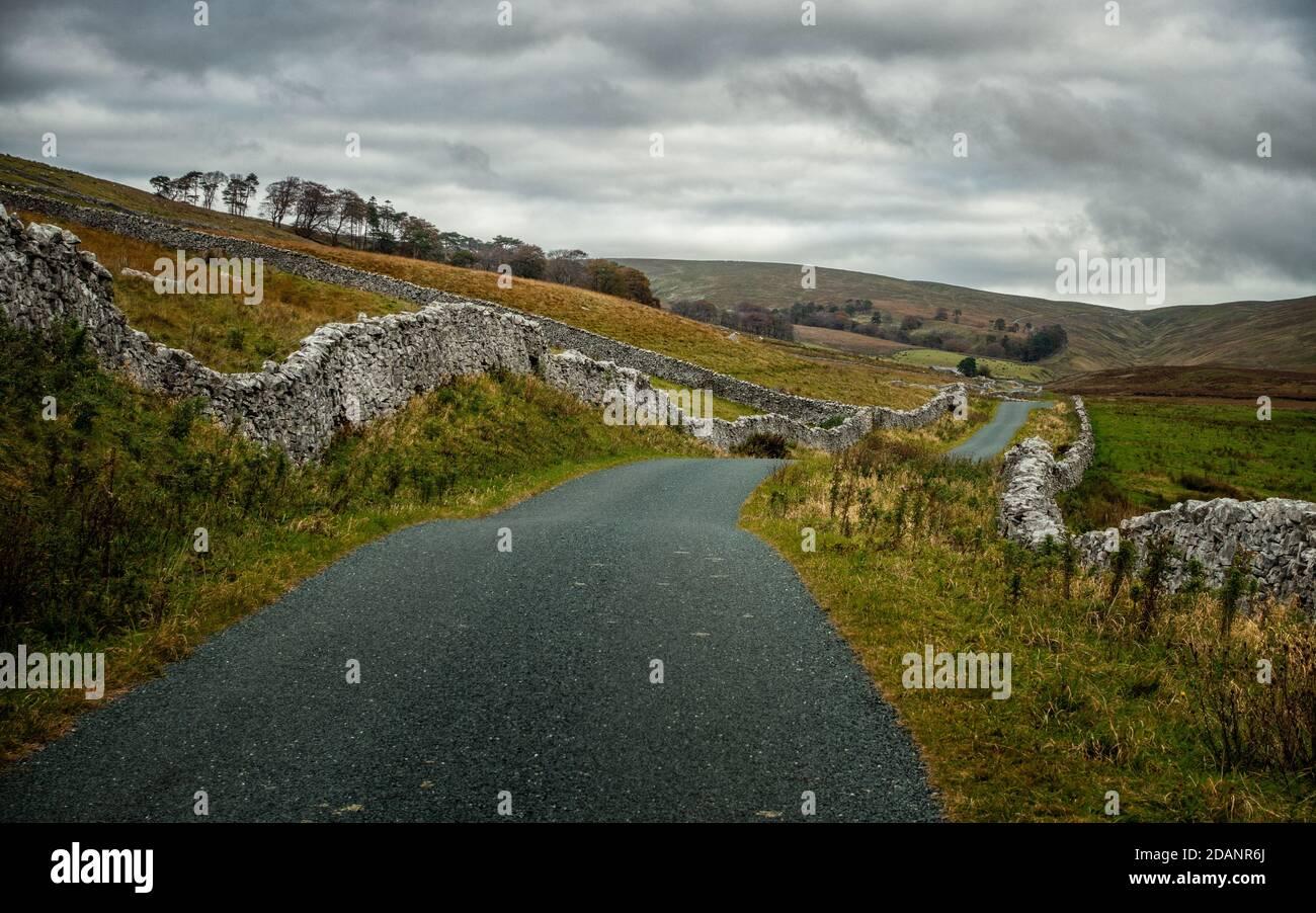 Paisaje del Reino Unido: Mirando hacia el valle menos visitado de Kingsdale y hermosa carretera de ciclismo, Thornton Lane, Yorkshire Dales National Park Foto de stock