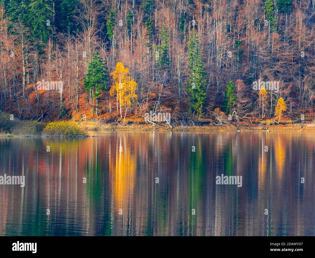 Hermoso lago Autumnal tarde reflexión Lokve lago Lokvarsko jezero en Croacia Europa Foto de stock