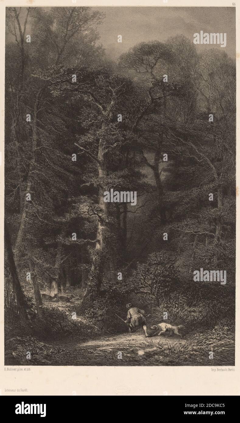 Karl Bodmer, (artista), Suiza, 1809 - 1893, intérieur de Forêt, litografía Foto de stock