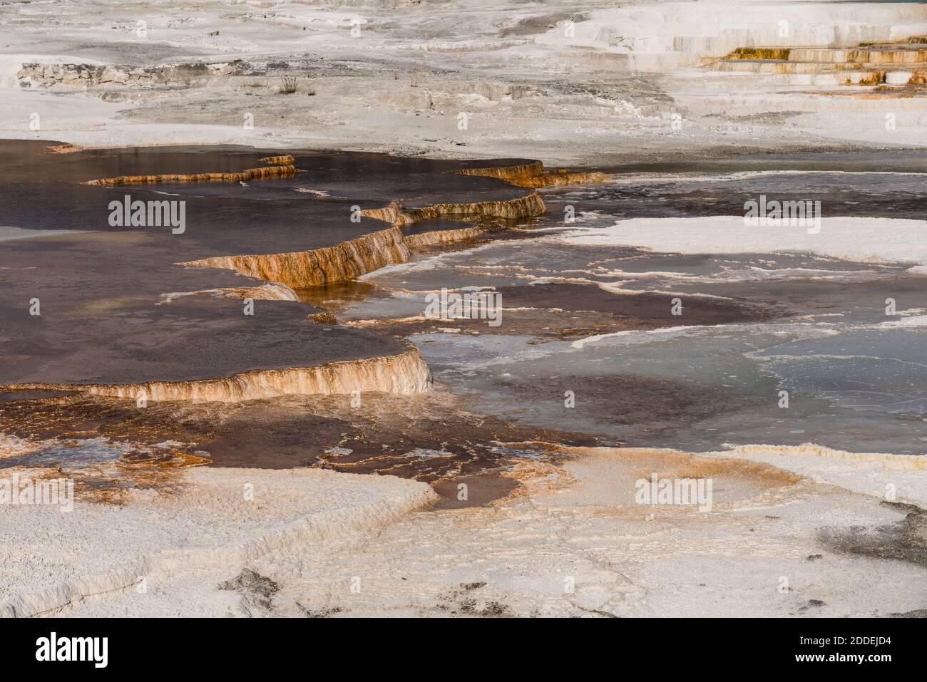 Terrazas de manantial Canario, Terraza Principal, Mammoth Hot Springs, Parque Nacional Yellowstone, Wyoming, Estados Unidos. Foto de stock
