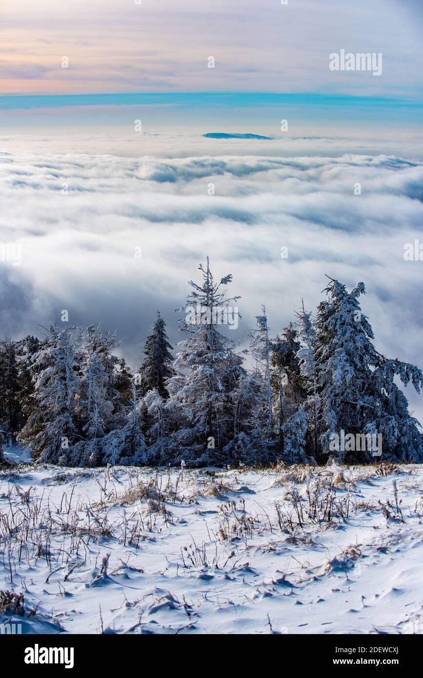 Paisaje nevado, montañas nevadas. Invierno en el bosque. Foto de stock