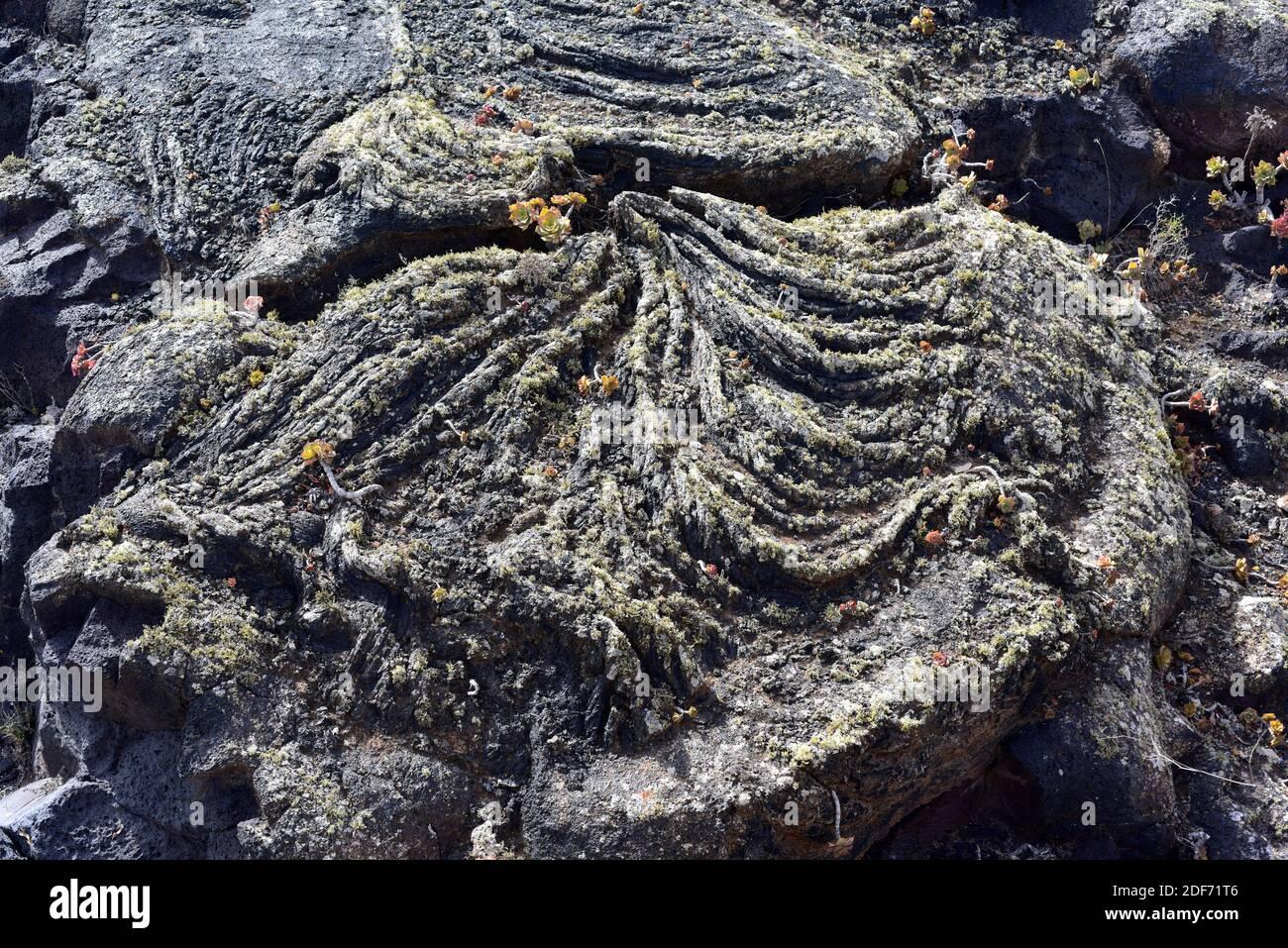 Pahoehoe o flujo de lava cerca de Masdache, Isla de Lanzarote, Islas Canarias, España. Foto de stock