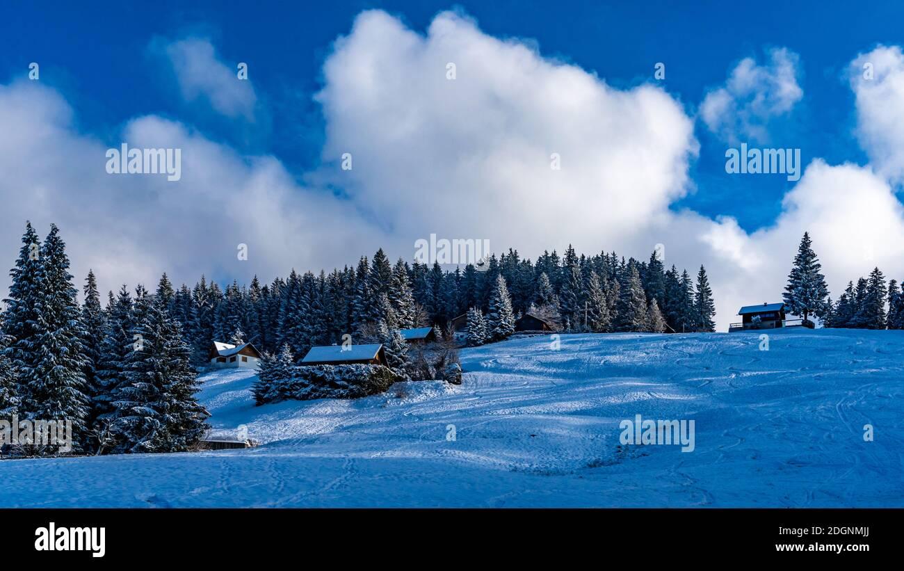 Ferienhaus im Schnee am Waldrand. Verschneiter Tannenwald mit Aussicht. Invierno en Bergen. alpino Foto de stock