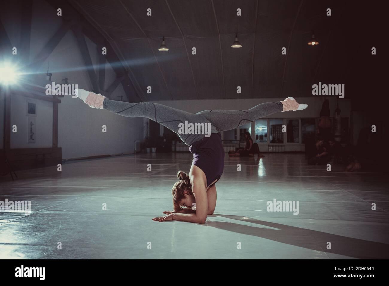 Joven mujer yogui atractiva practicando el concepto de yoga, de pie en la variación del ejercicio de Pincha Mayurasana, postura de pie de mano, Workin Foto de stock