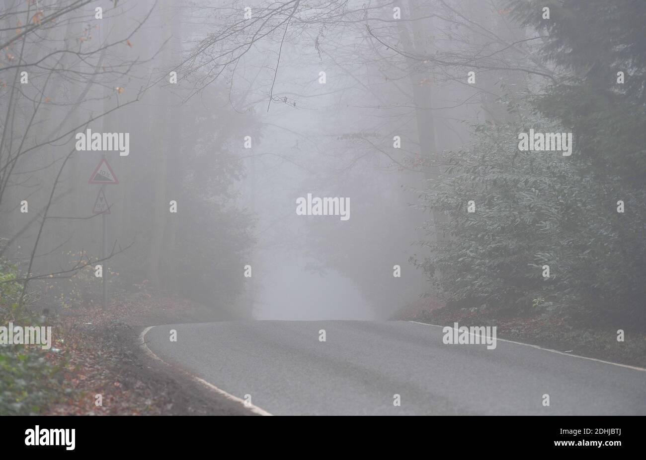 Imágenes de stock de niebla en el bosque - North Downs cerca de West Horsley, Surrey.- Dick Focks Common - Forestry Commission. La imagen muestra niebla, árboles, niebla a través de esta pintoresca zona de Surrey. Foto tomada el 7 de diciembre de 2020 Foto de stock
