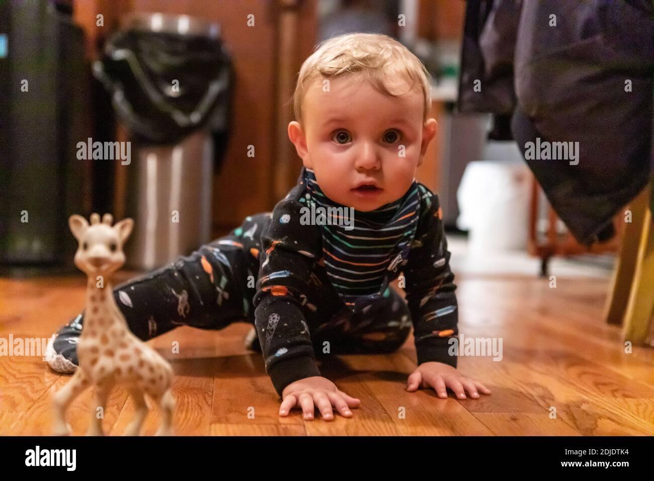 Lindo y curioso niño vestido de noche, jugando en el suelo de madera en casa con juguetes de animales como jirafa mientras mira la cámara Foto de stock