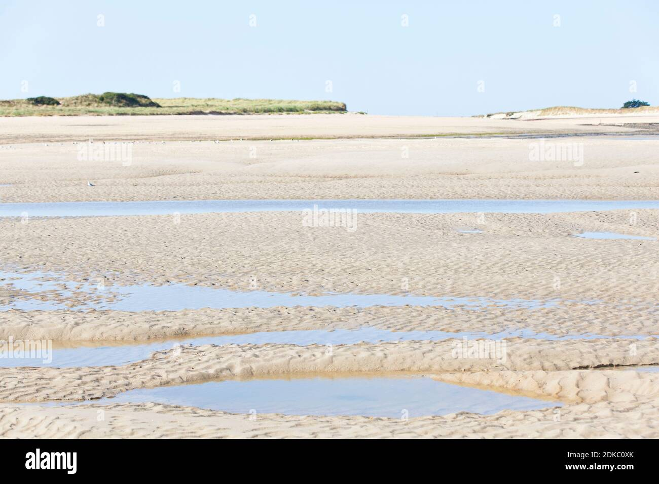The beach at low tide in front of Portbail, Cotentin Peninsula, Normandy, France Foto de stock