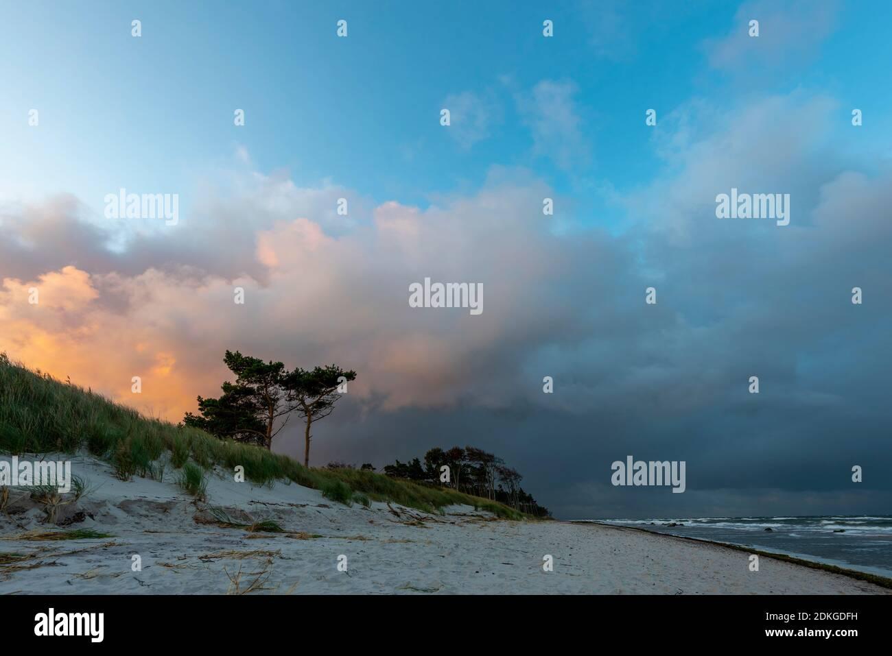 Alemania, Mecklemburgo-Pomerania Occidental, Prerow, amanecer en la playa oeste, Mar Báltico Foto de stock