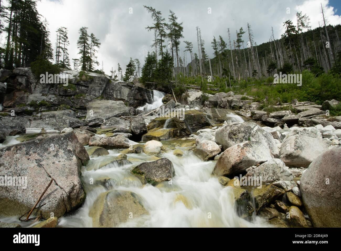 Cascadas de flujo frío en Gran Valle frío en Tatras Alto, Eslovaquia. Cielo nublado. Foto de stock