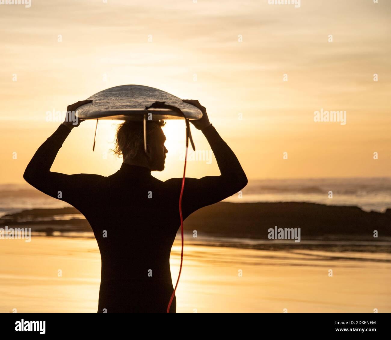 Surfista silueta llevando tabla de surf sobre la cabeza en la playa durante la puesta de sol Foto de stock
