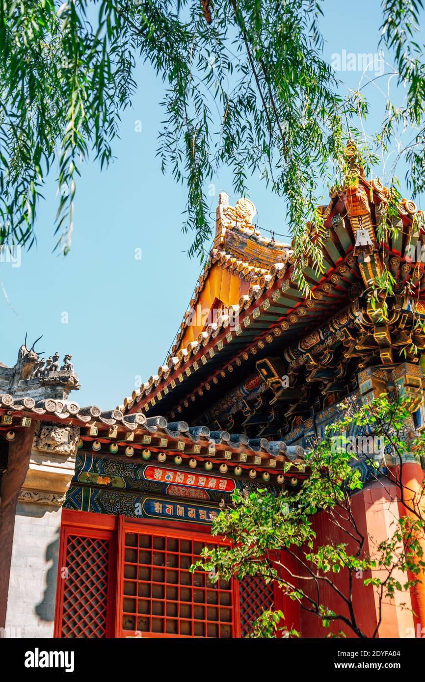 El Templo Lama, la arquitectura tradicional china en Beijing, China Foto de stock
