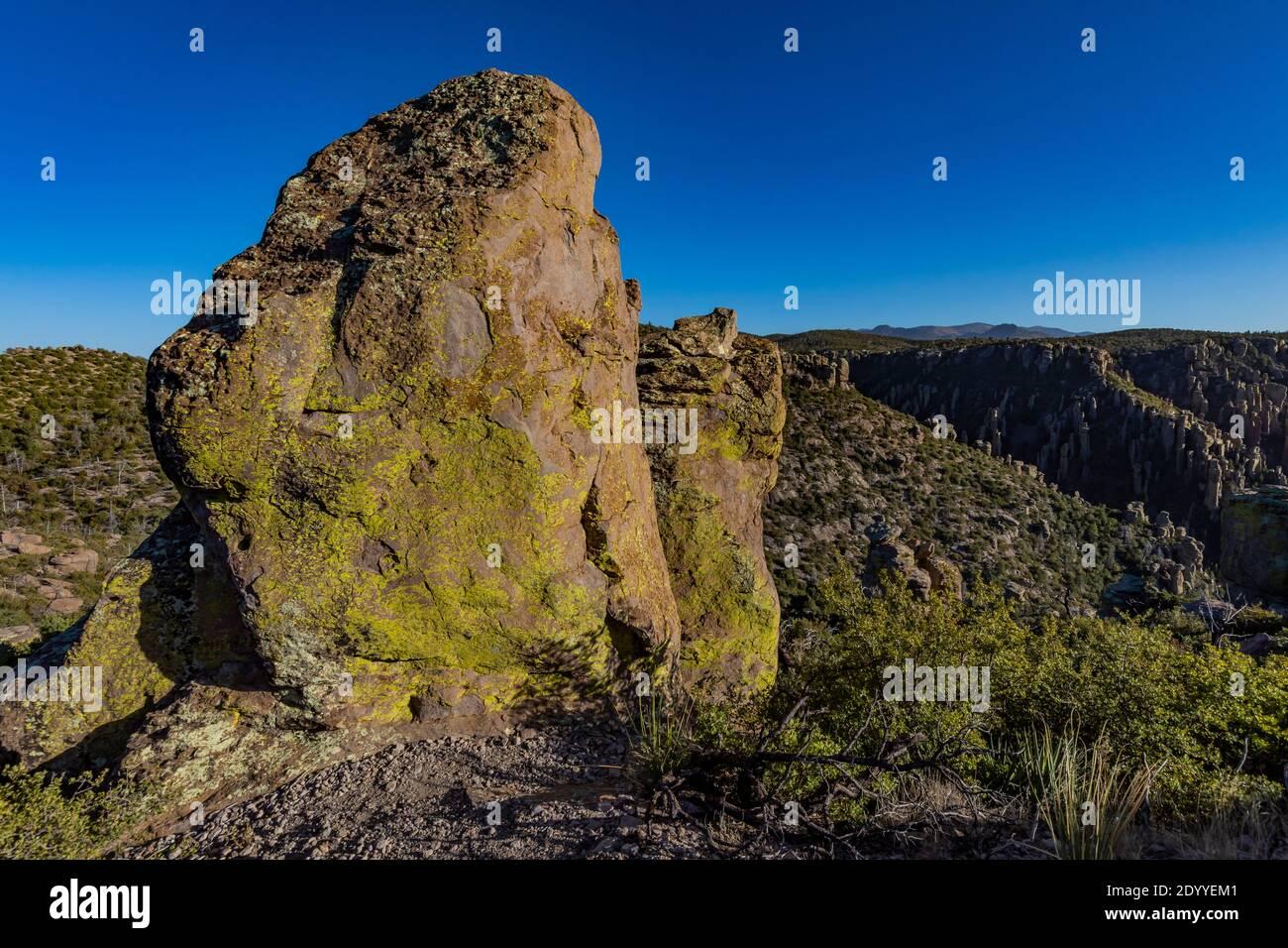 Pináculo de riolita a lo largo del Sendero Natural Massai Point en el Monumento Nacional Chiricahua, Arizona, EE.UU Foto de stock