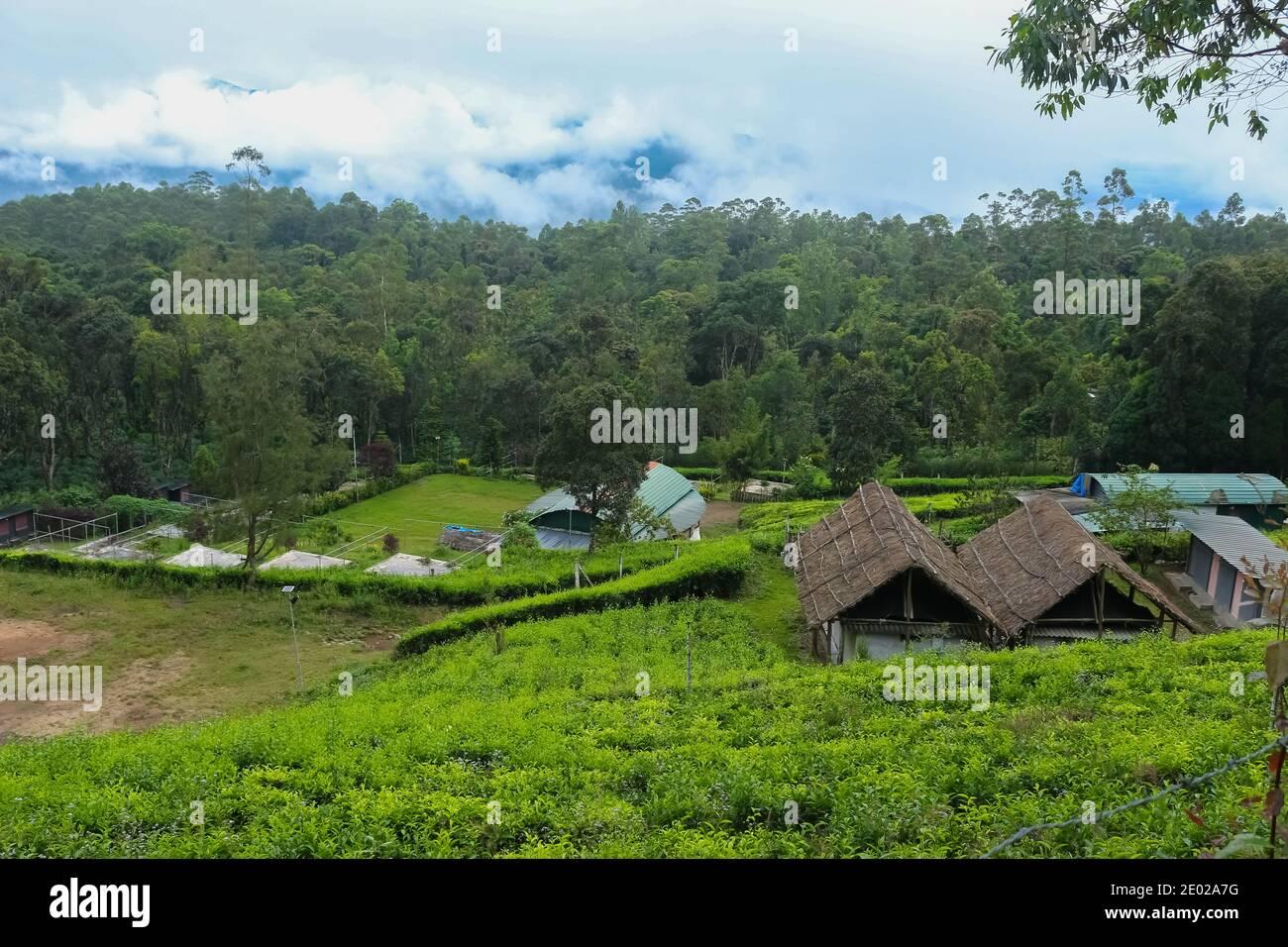 Hermosa casa de estancia Villa situado en el centro de la plantación de té en Munnar, Kerala, India. Turismo de estancia en casa. Foto de stock