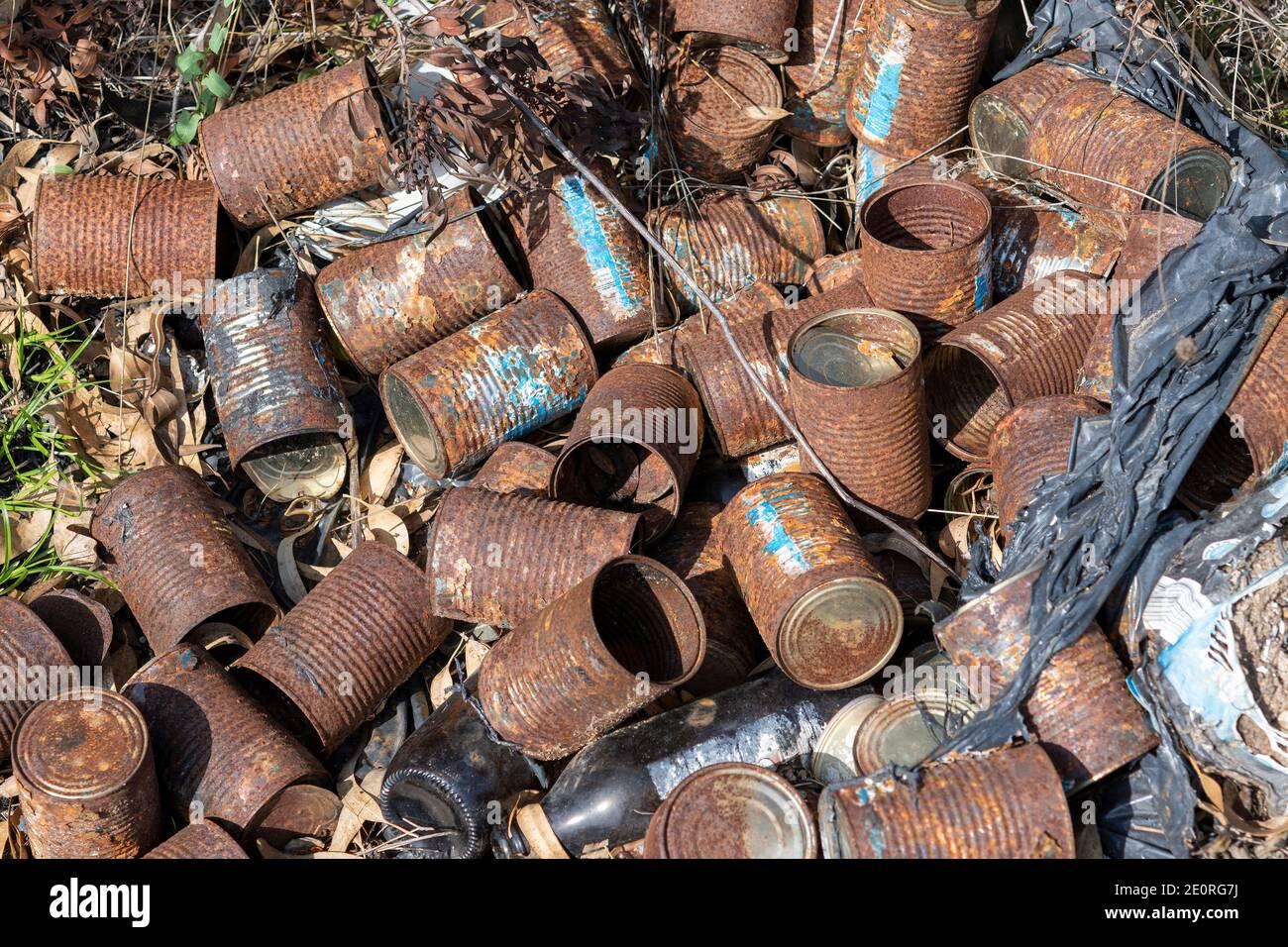 Viejas latas oxidadas yacen en el suelo y hierba seca en la naturaleza. Contaminación y medio ambiente. Foto de stock
