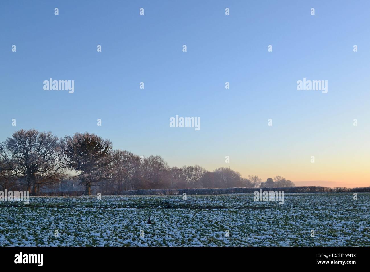 Fackenden Down, en Kent, cerca de Sevenoaks, en nieve y heladas en enero de 2021 a última hora de la tarde. Árboles helados, vistas brumosas, ramas escarchadas, carretera helada Foto de stock
