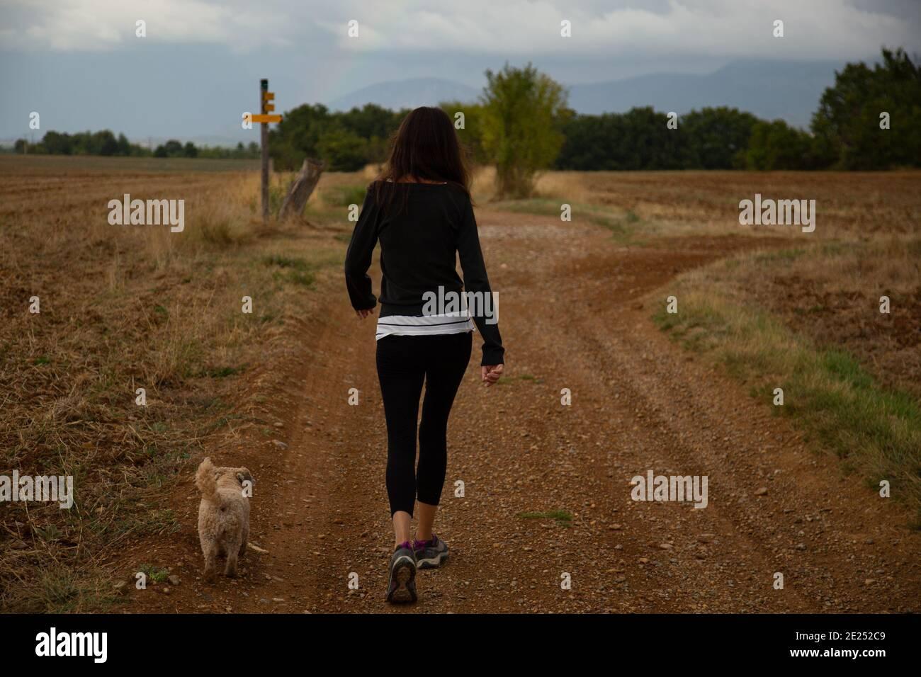 Mujer caminando a su perro en el campo Foto de stock