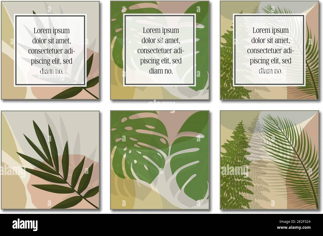 plantilla de diseño botánico de varias páginas con espacio de copia para ilustración vectorial de texto. Ilustración del Vector