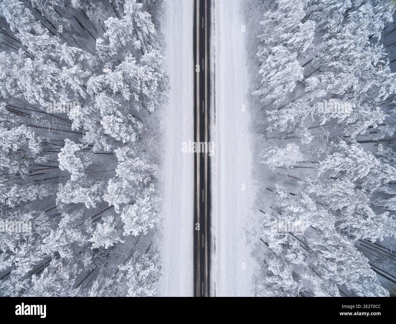 Bosque nevado de coníferas de invierno con un camino de asfalto negro. Fotografía de la naturaleza. Vista panorámica desde la cima desde una vista de pájaro Foto de stock