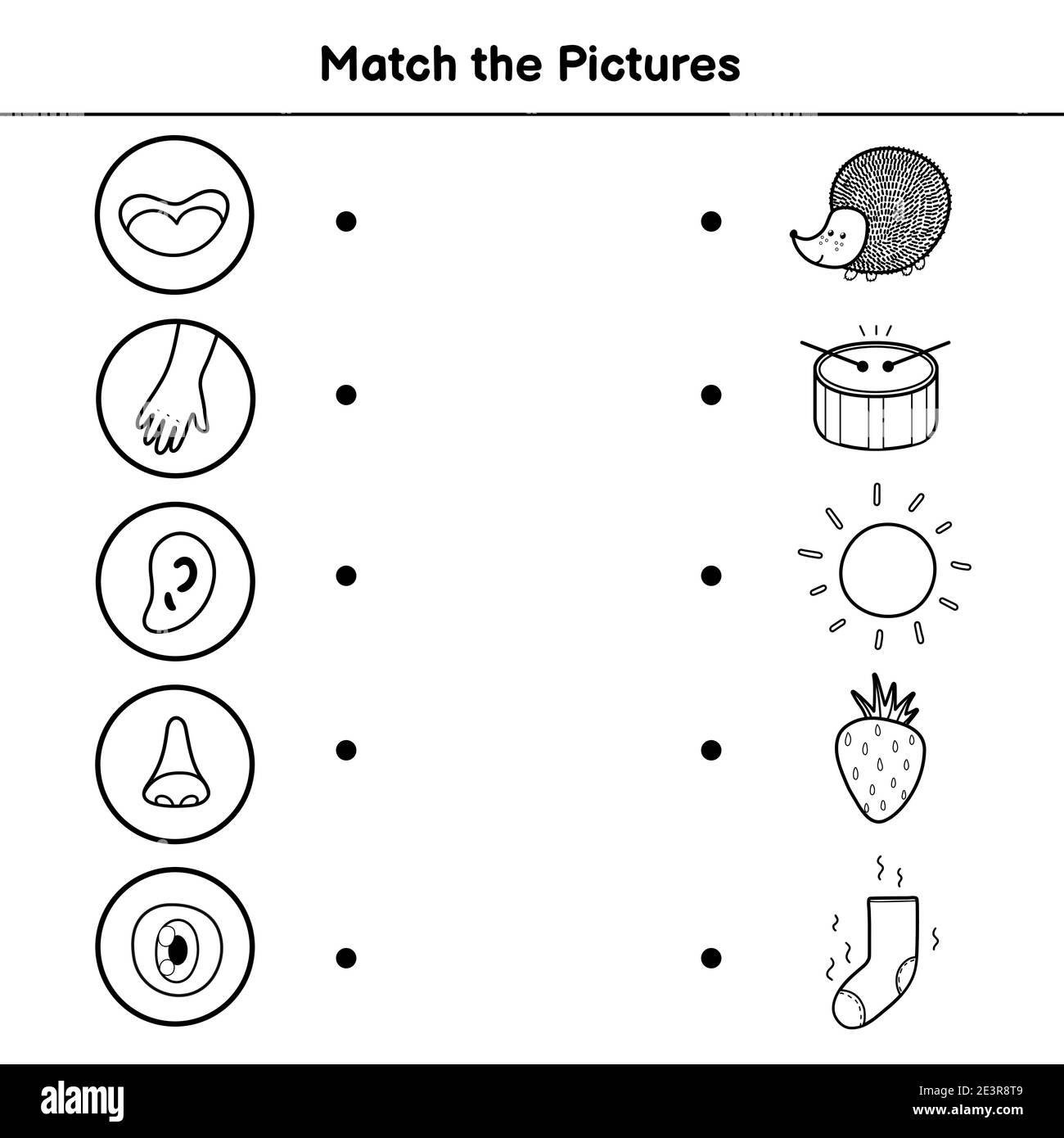 Cinco Sentidos Imágenes Recortadas De Stock Alamy