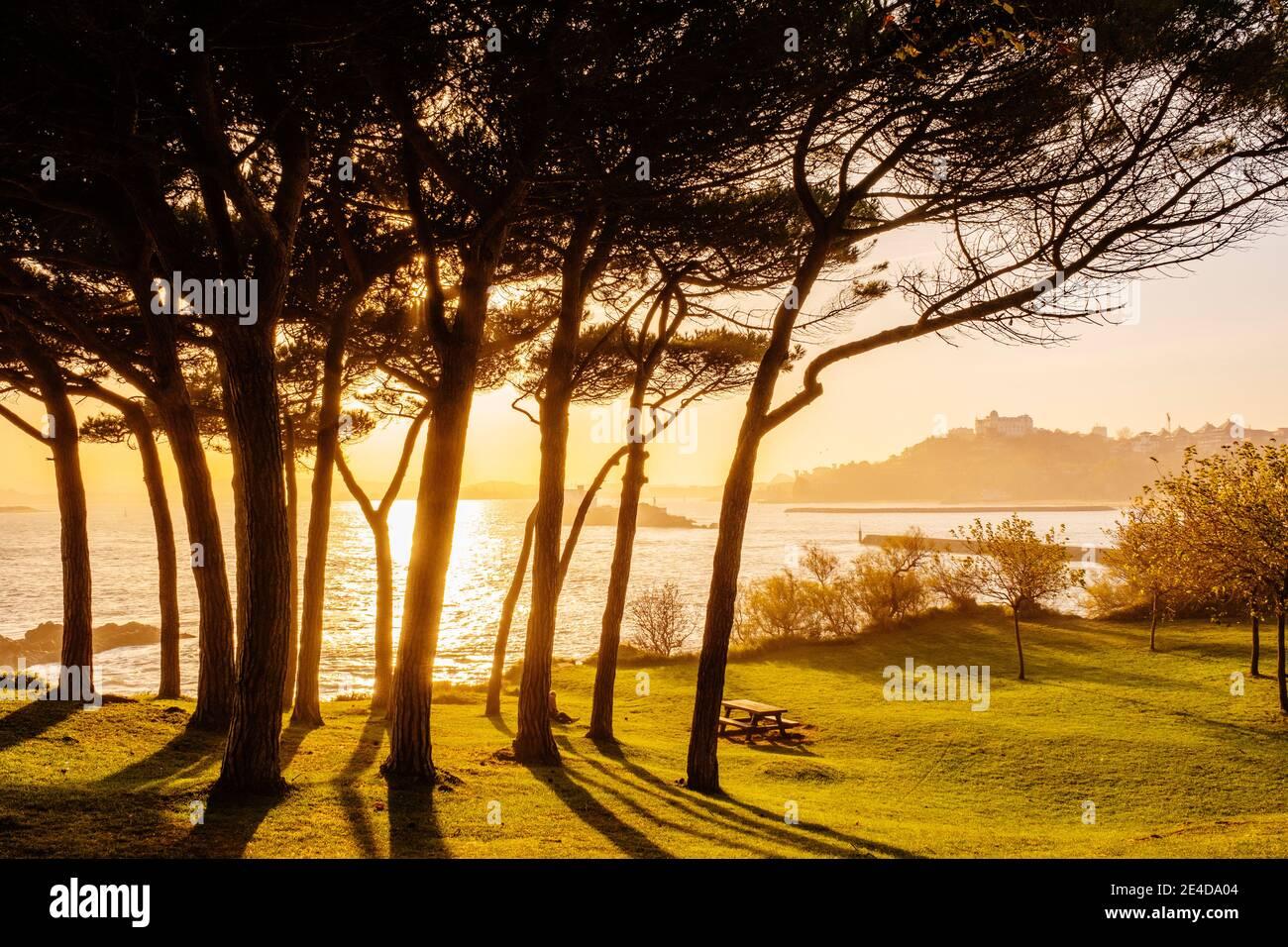 Jardines de la Península de la Magdalena. Santander, Mar Cantábrico, Cantabria, Norte de España, Europa Foto de stock