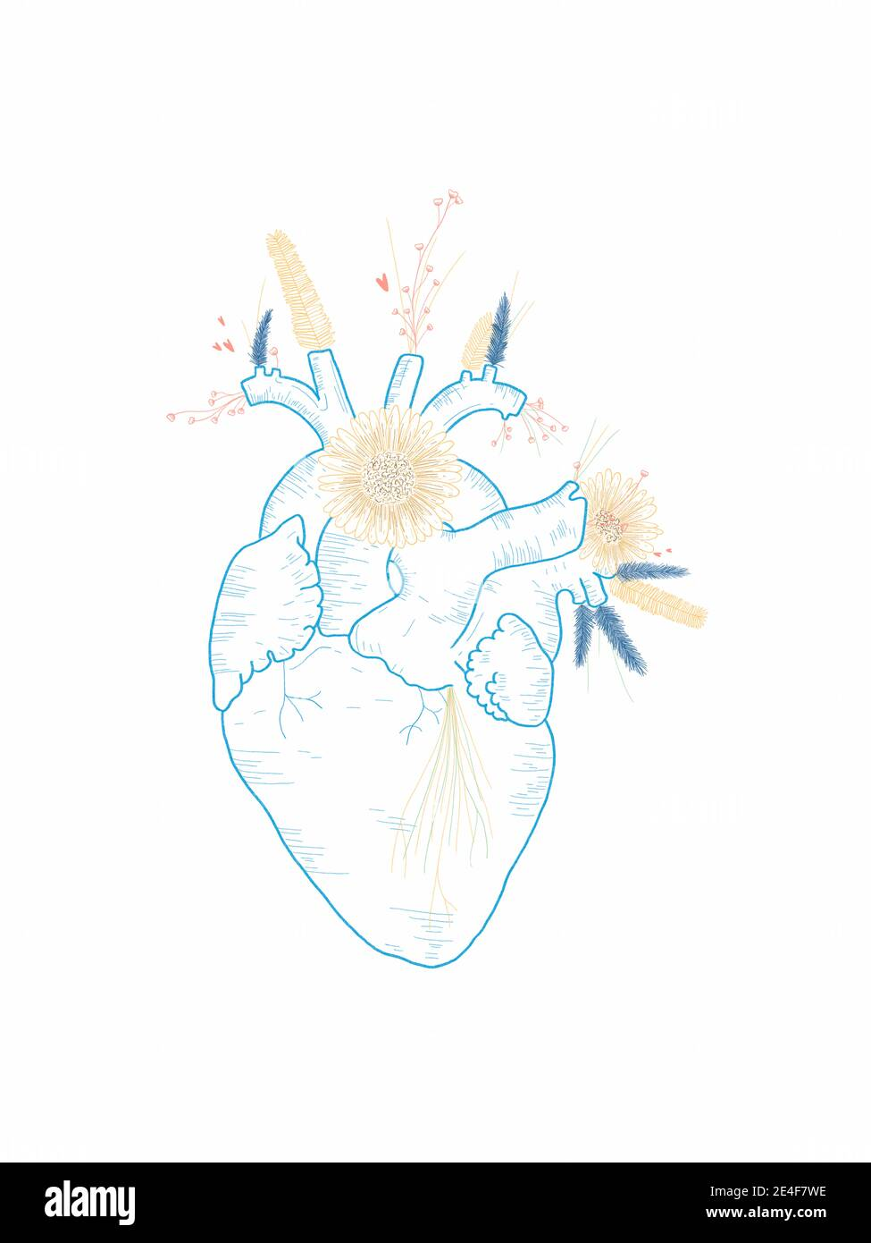 Dibujo a mano de un corazón con flores Foto de stock