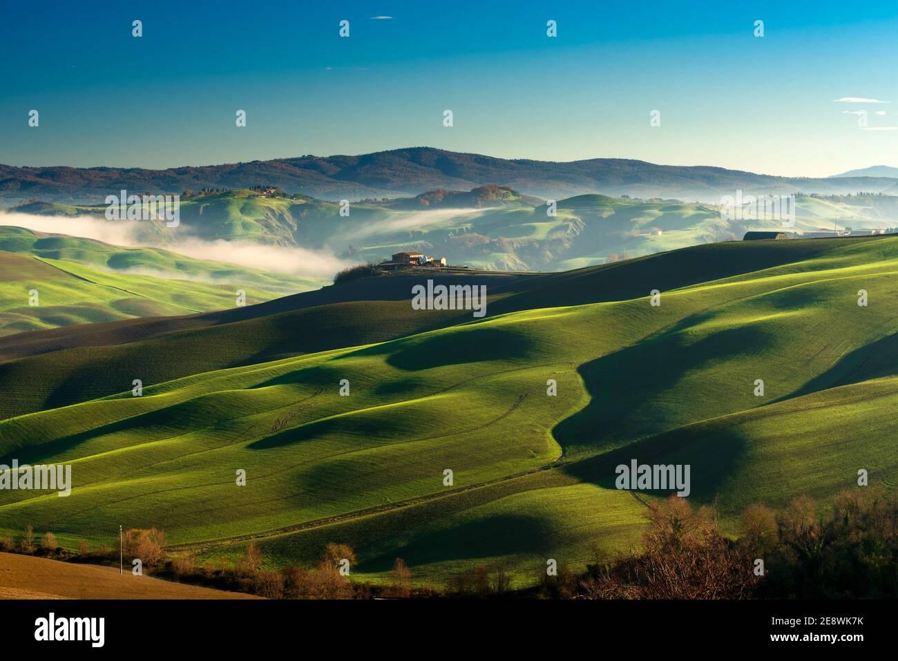 Verdes colinas onduladas en una mañana soleada en el paisaje de crete senesi paisaje cerca de Asciano, Siena Foto de stock