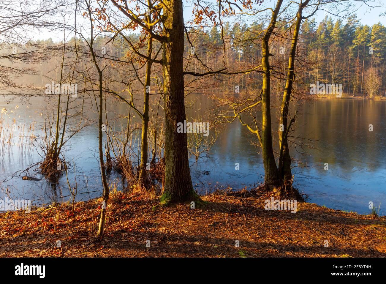 Otoño en el lago de Masuria, Polonia Foto de stock