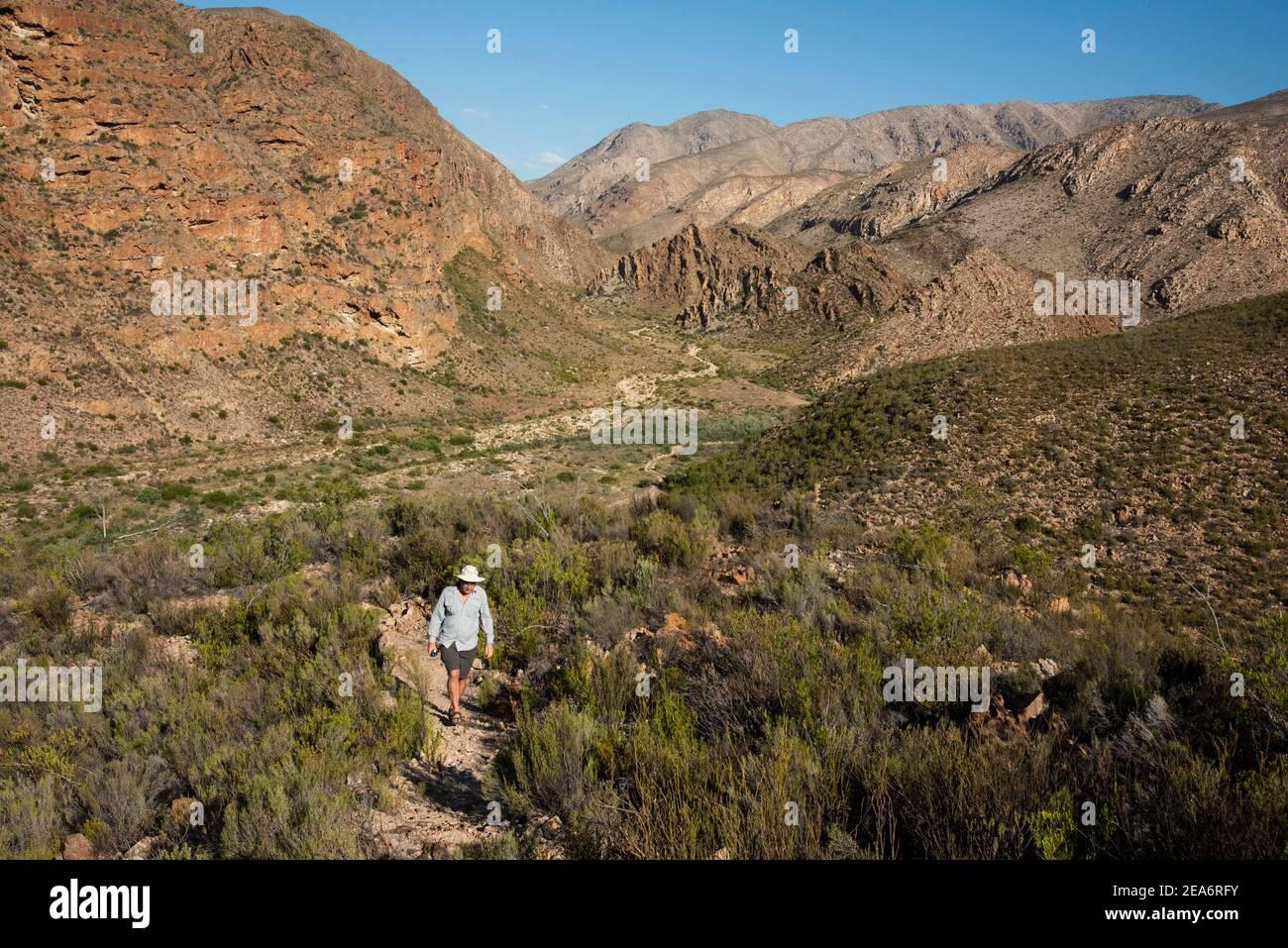 Hiker, Baviaanskloof, Sudáfrica Foto de stock