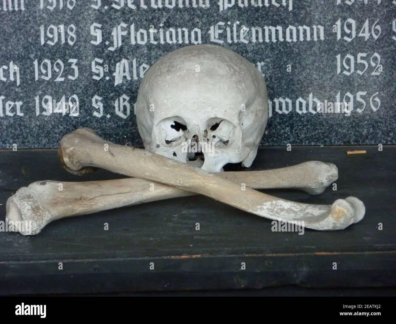 cráneo y huesos cruzados, símbolo de la muerte Foto de stock