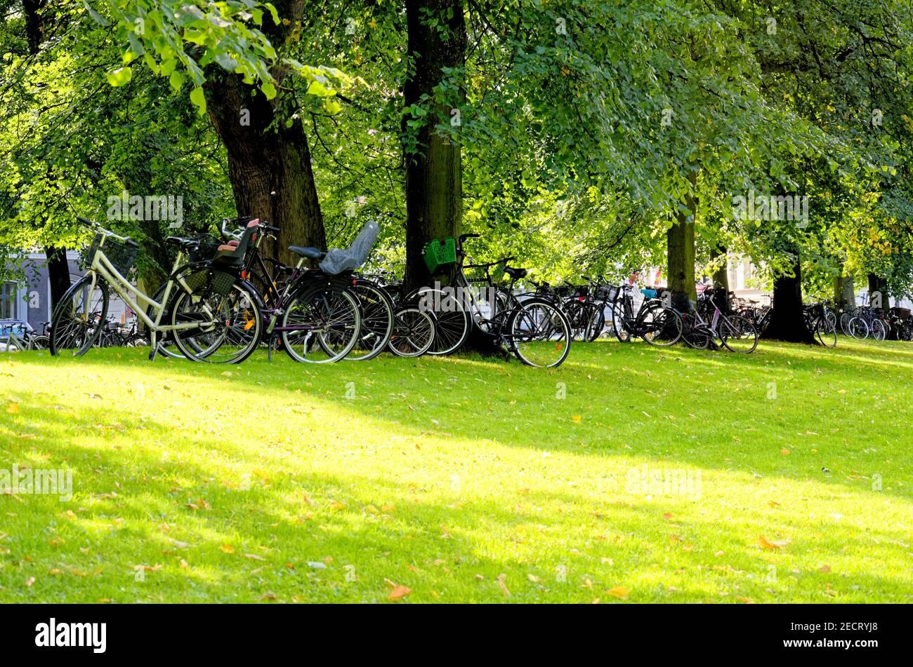Kastellet Park - Copenhague - Dinamarca. Kastellet, situada en Copenhague, Dinamarca, es una de las fortalezas mejor conservadas del norte de Europa Foto de stock