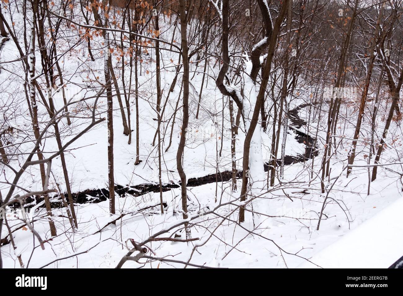 Shadow Falls Creek fluyendo en una ruta curva a través de la nieve hasta el Río Mississippi. St Paul Minnesota MN EE.UU Foto de stock