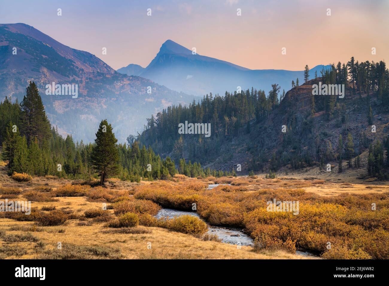 Arroyo de montaña Foto de stock