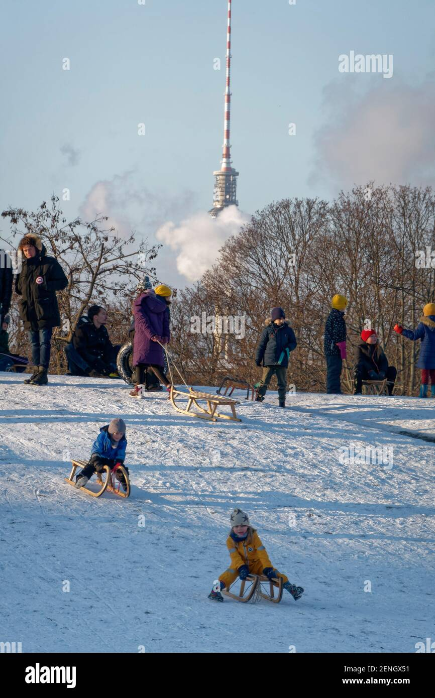 Schlittenfahren im Goerlitzer Park, invierno, Kreuzberg, Berlín Foto de stock