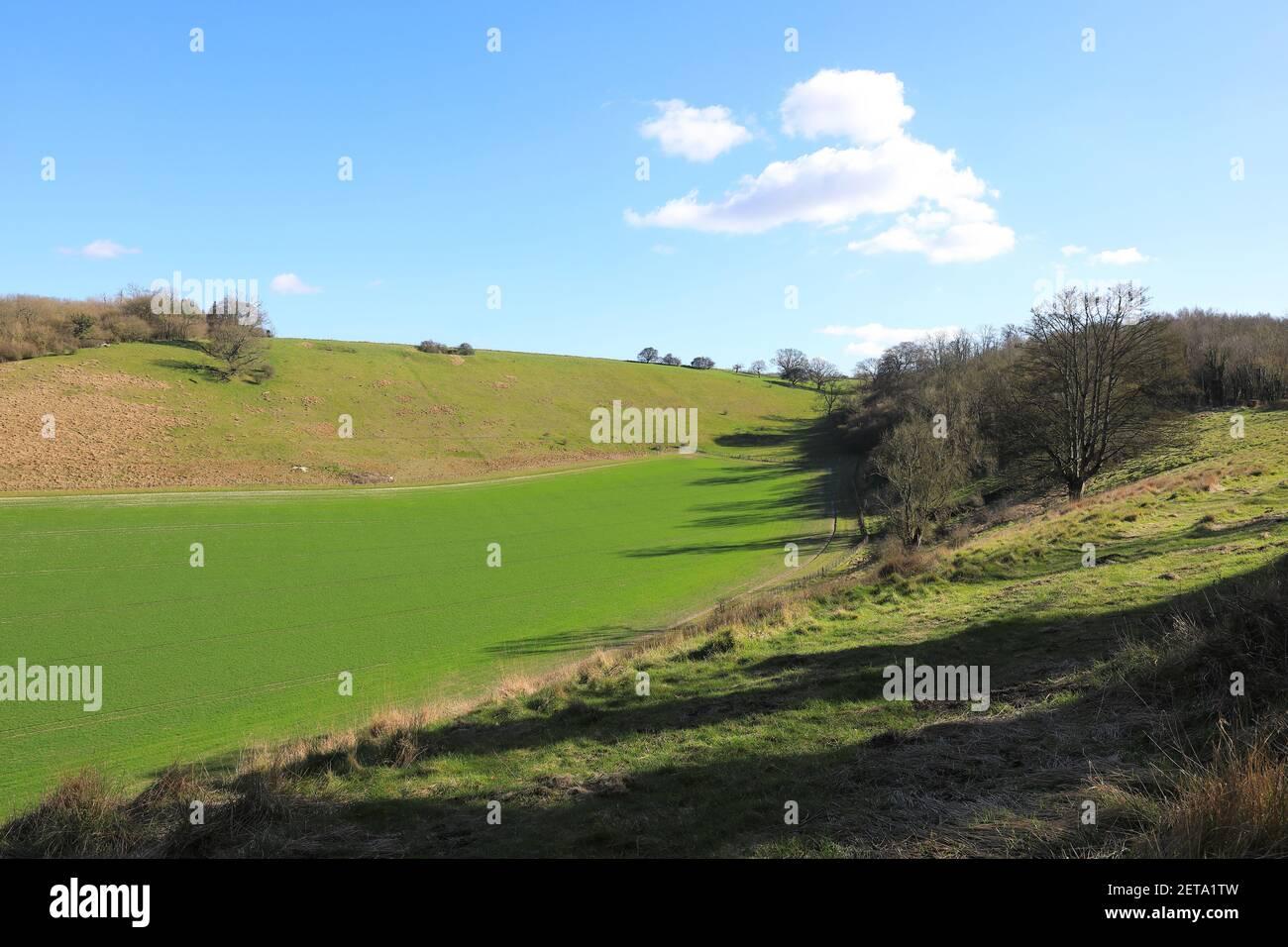 Tierras de cultivo alrededor de los Downs del Norte, en Kent, bajo el sol de invierno, en el Reino Unido Foto de stock