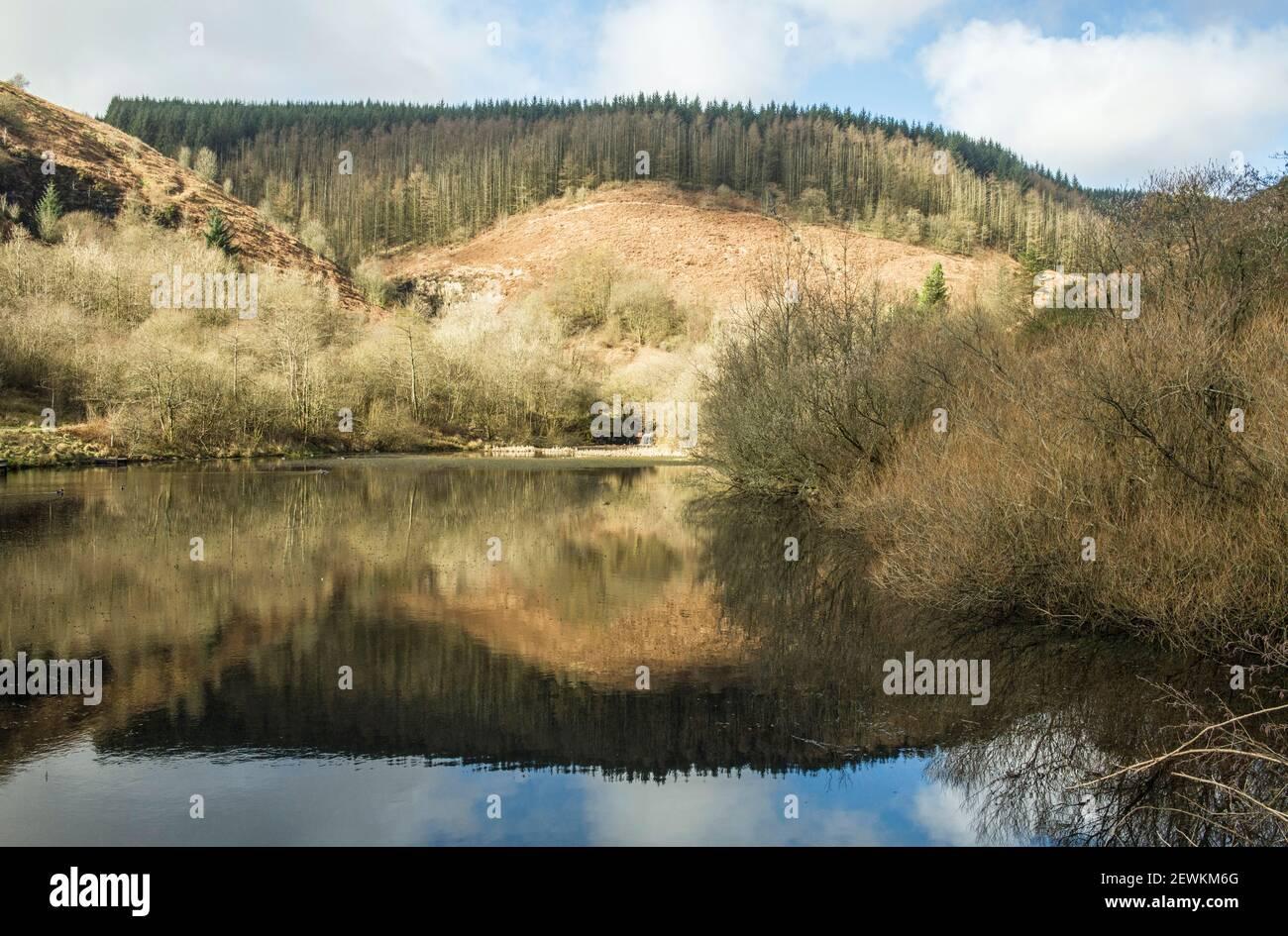 El estanque superior en el parque de campo Cwm Clydach fuera El valle de Rhondda Fawr en el sur de Gales Foto de stock