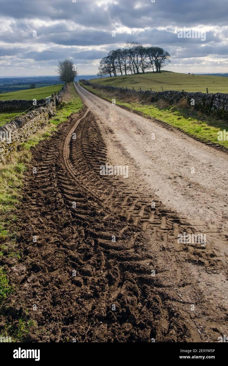Pistas de tractores fangosos, Gag Lane, Thorpe, Parque Nacional del Distrito de los Picos, Derbyshire Foto de stock
