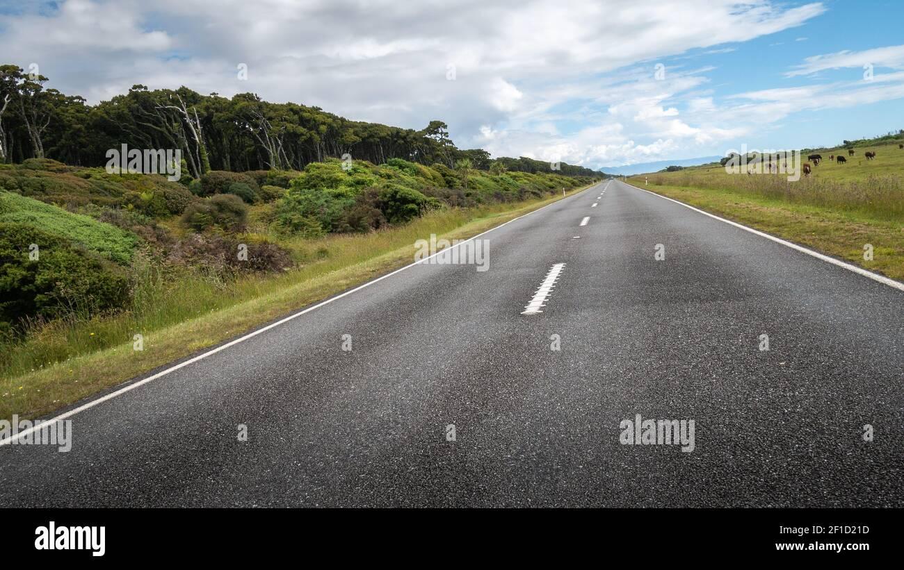 Carretera que conduce a la distancia (inclinada). Tiro hecho durante el día soleado en la región de la costa oeste de Nueva Zelanda Foto de stock