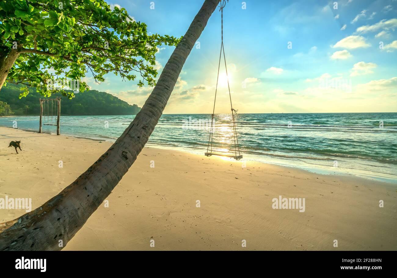 Sol swing junto a una palmera en la idílica playa de Sao en la isla Phu Quoc, Vietnam. Sao beach es una de las mejores playas de Vietnam. Foto de stock