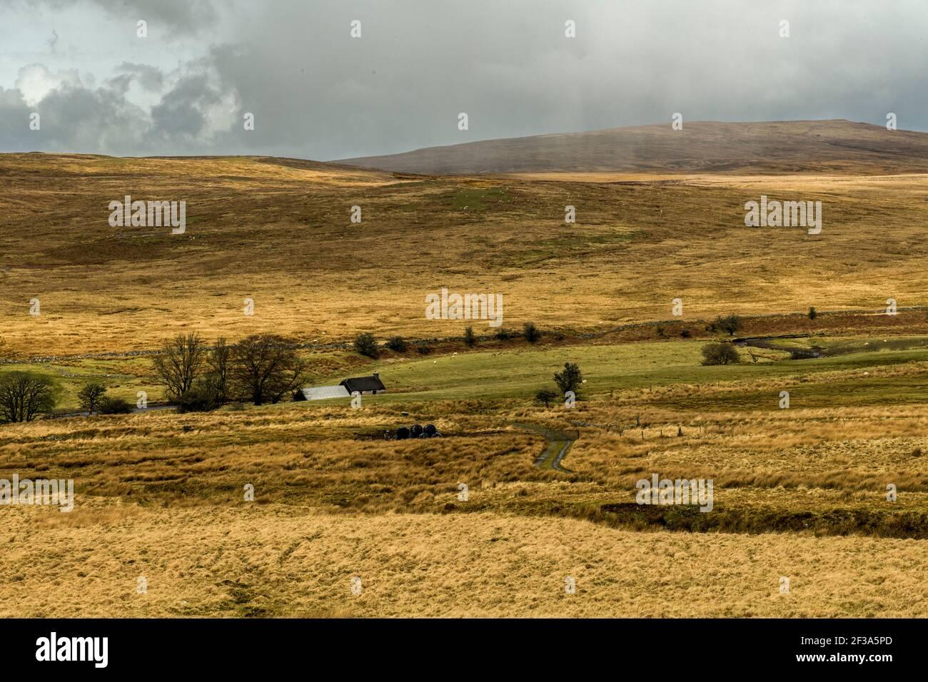 Barren Baecon paisaje por el A4059 en el Brecon Beacons Parque Nacional de Gales del Sur Foto de stock