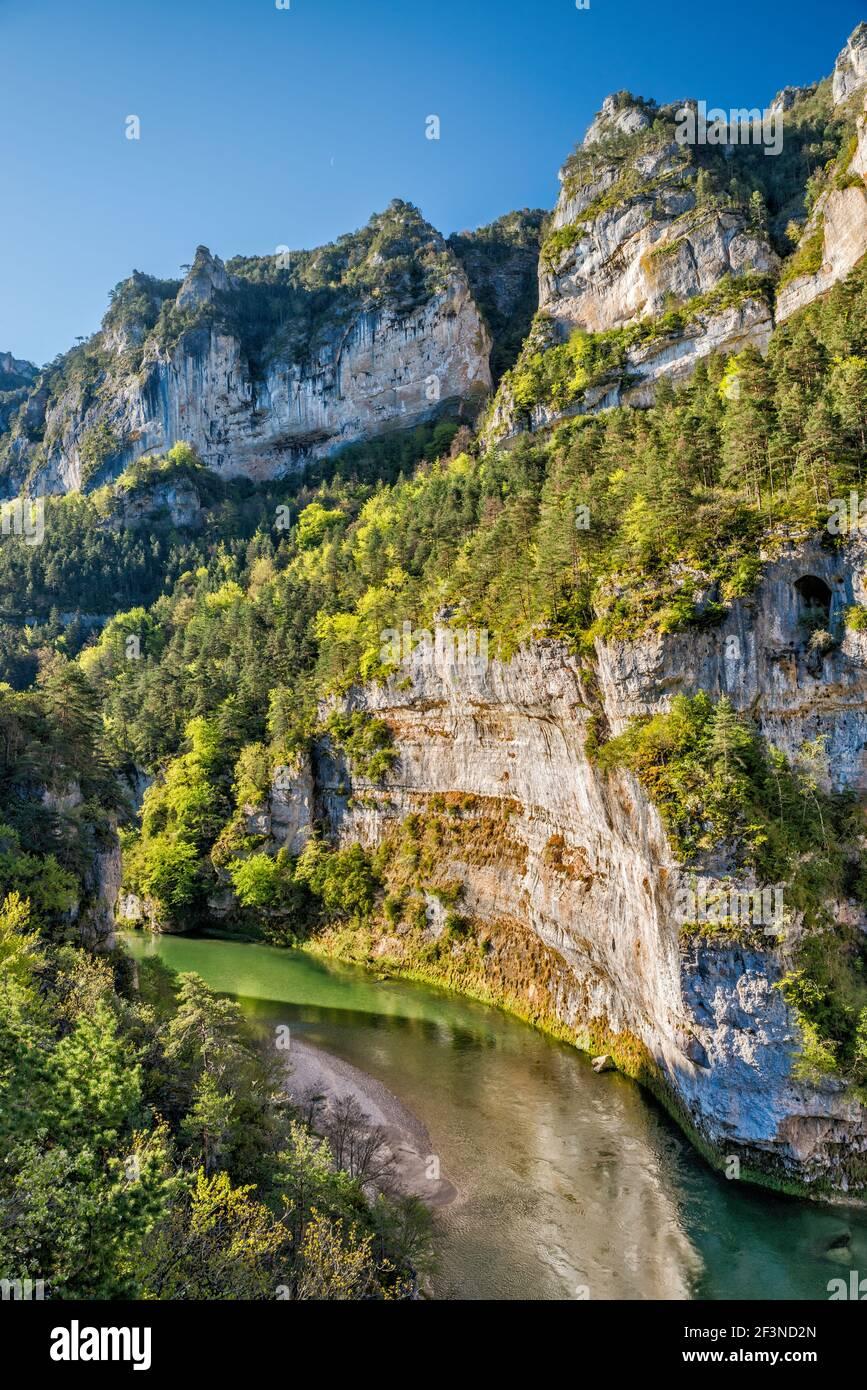 Les Detroits acantilados, río Tarn, Gorges du Tarn, cerca del pueblo de la Malene, comuna en el departamento de Lozere, región de Occitanie, Francia Foto de stock