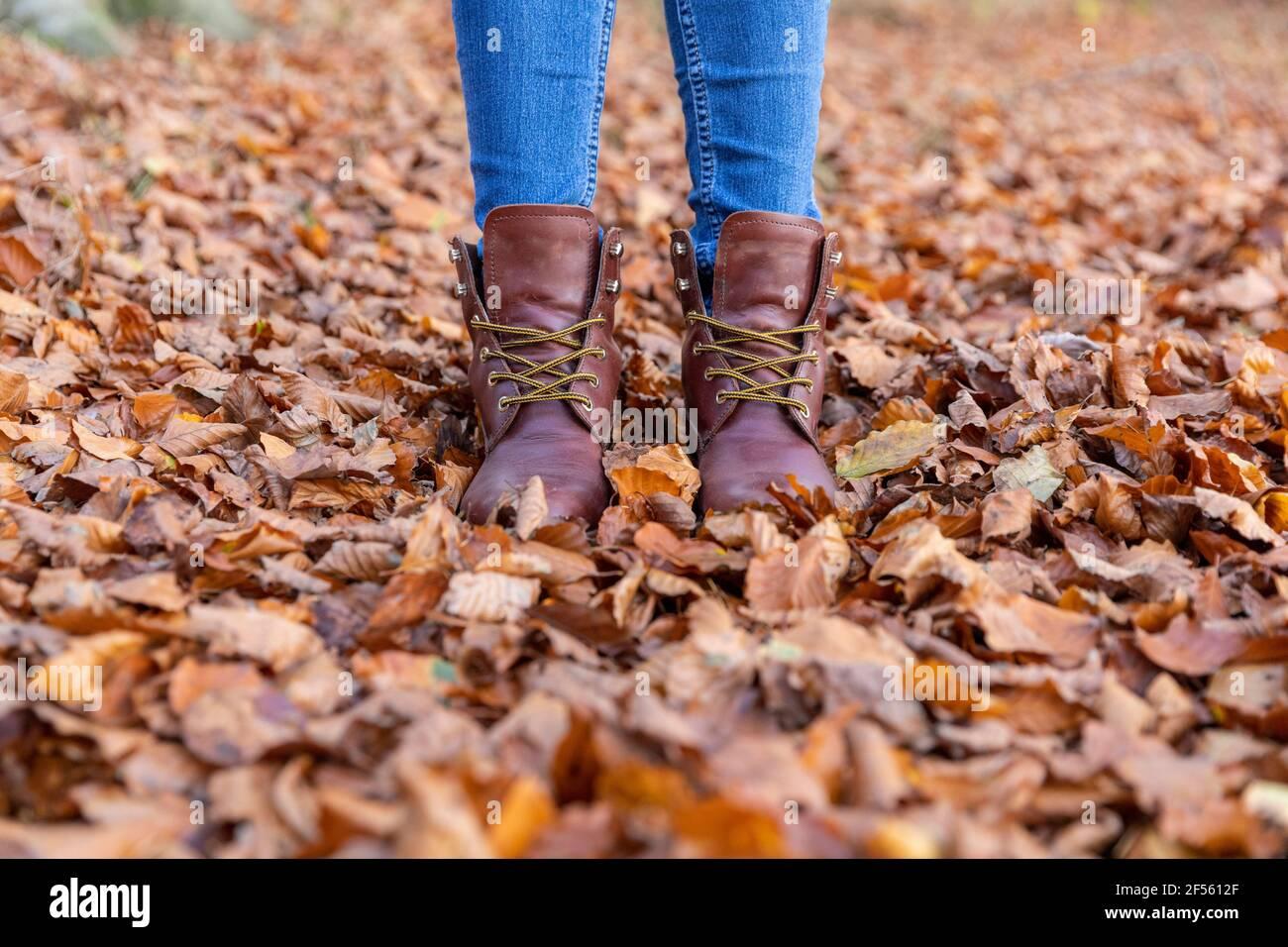 Mujer en botas de pie en hojas de otoño mientras que el senderismo en bosque Foto de stock