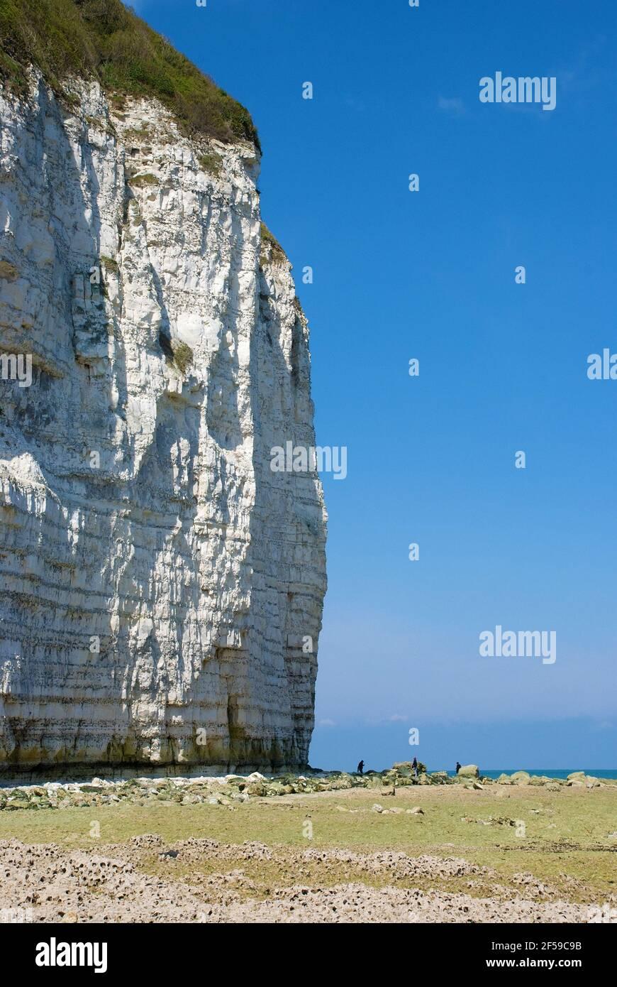 Falaise d'Aval acantilados cerca de Yport en la marea baja Foto de stock