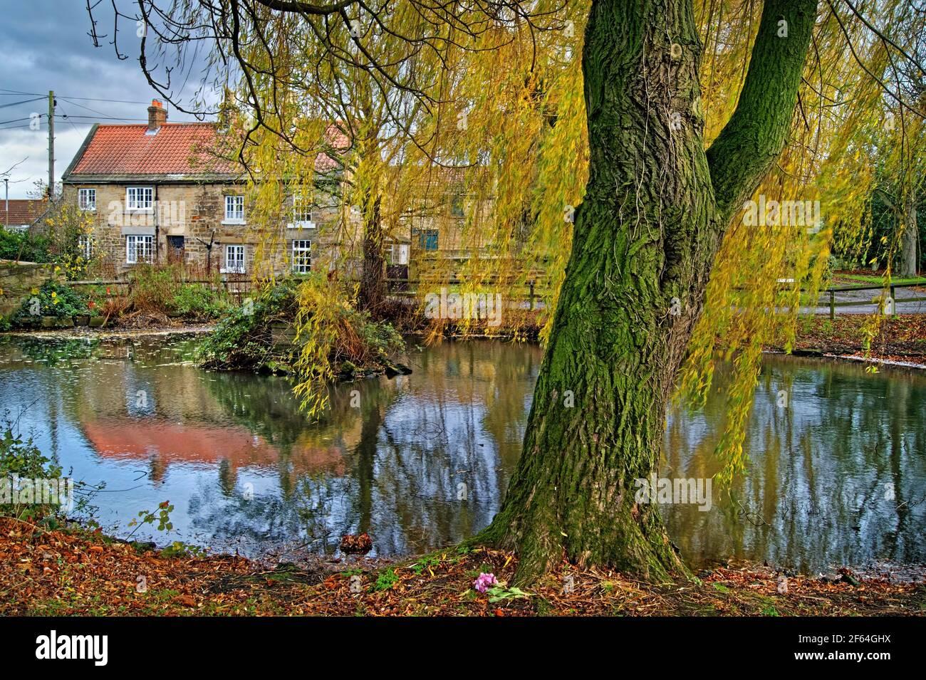 Reino Unido, Yorkshire del Sur, Doncaster, pueblo de Clayton con estanque durante el otoño Foto de stock